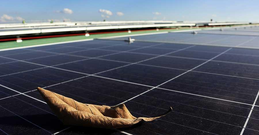 solar-shading-Trace-Software-International